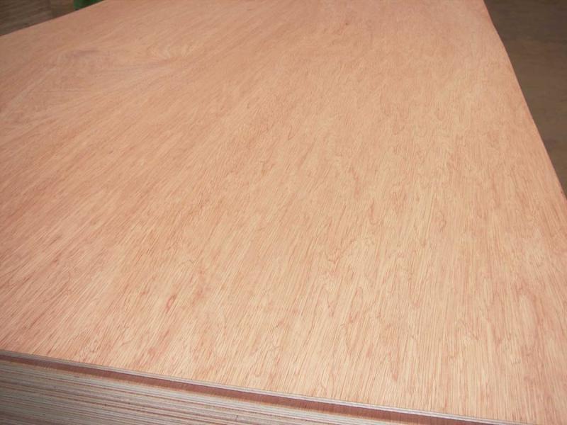 木胶板厂家产品为什么不能暴晒?